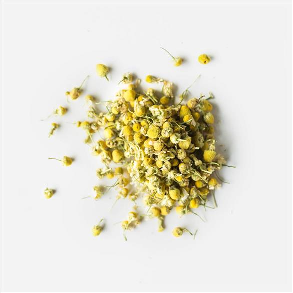 Golden Chamomile Blossoms